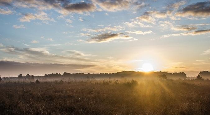 sunrise-717816_820.jpg